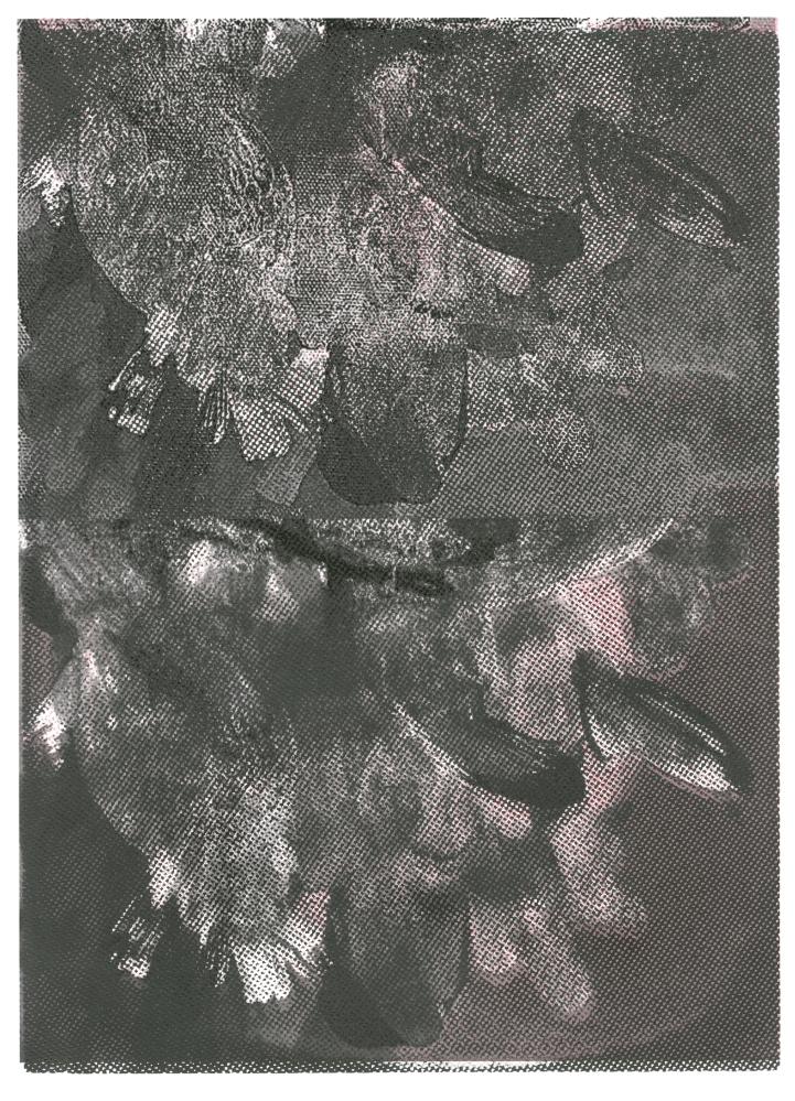 silkscreen, print, printmaking