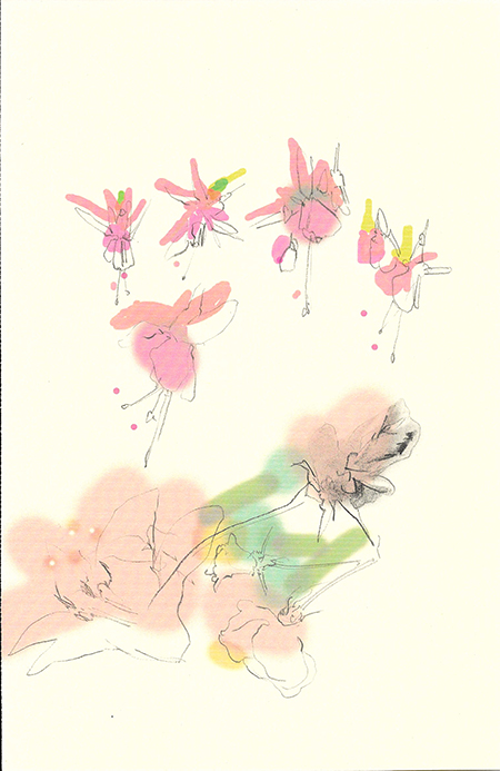 Floral inkjet print and pencil drawing on paper